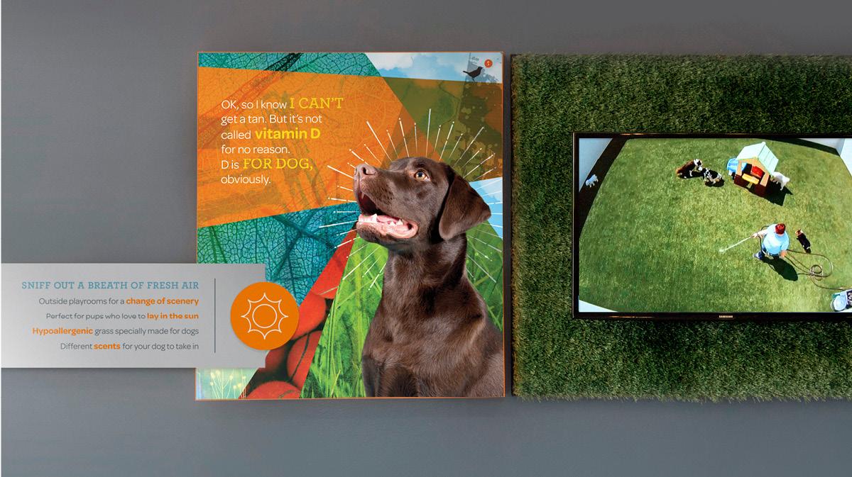 dogtopia-brand4